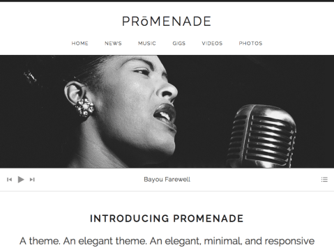 Featuring a widgetized home page, Promenade's clean layout and minimalistic design is perfect to capture your audience's attention and allow them to easily navigate your content.