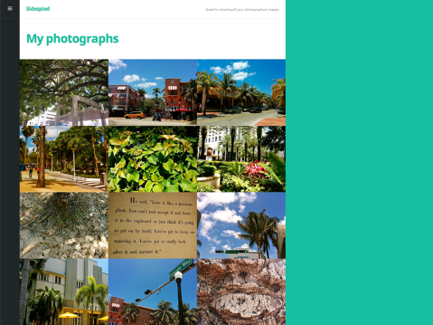 A portfolio child theme of Espied. Great for showing off your photographs or images.