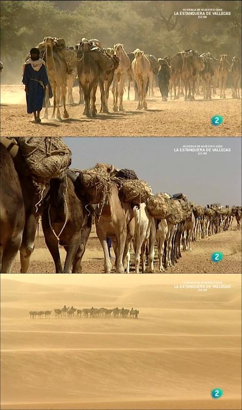 Tuareg: los guerreros de las dunas [2014] [WEBDL]