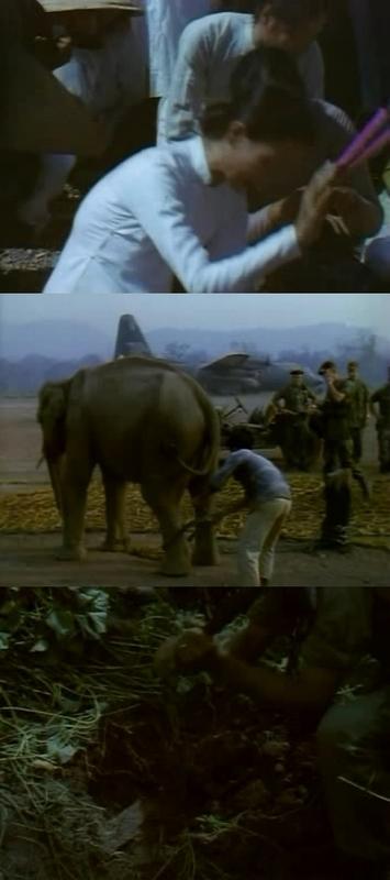 La guerra del Vietnam (Imagenes Ineditas) [1997][3/3] [DVDrip]