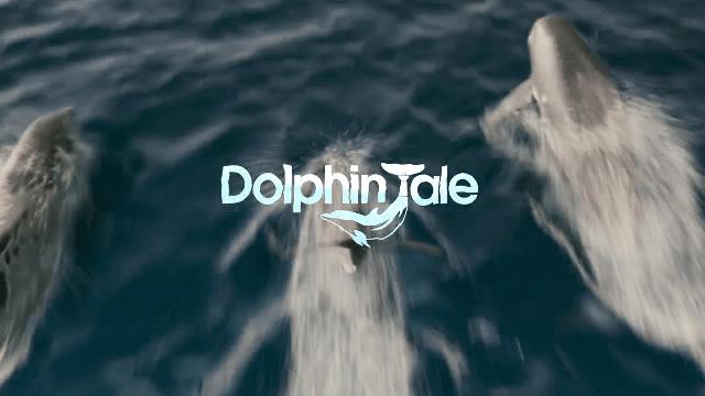 Ilcorsaroneropizza Dolphin Tale Winter Il Delfino 2011