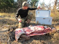 Image result for how to clean meat for deer to avoid cwd