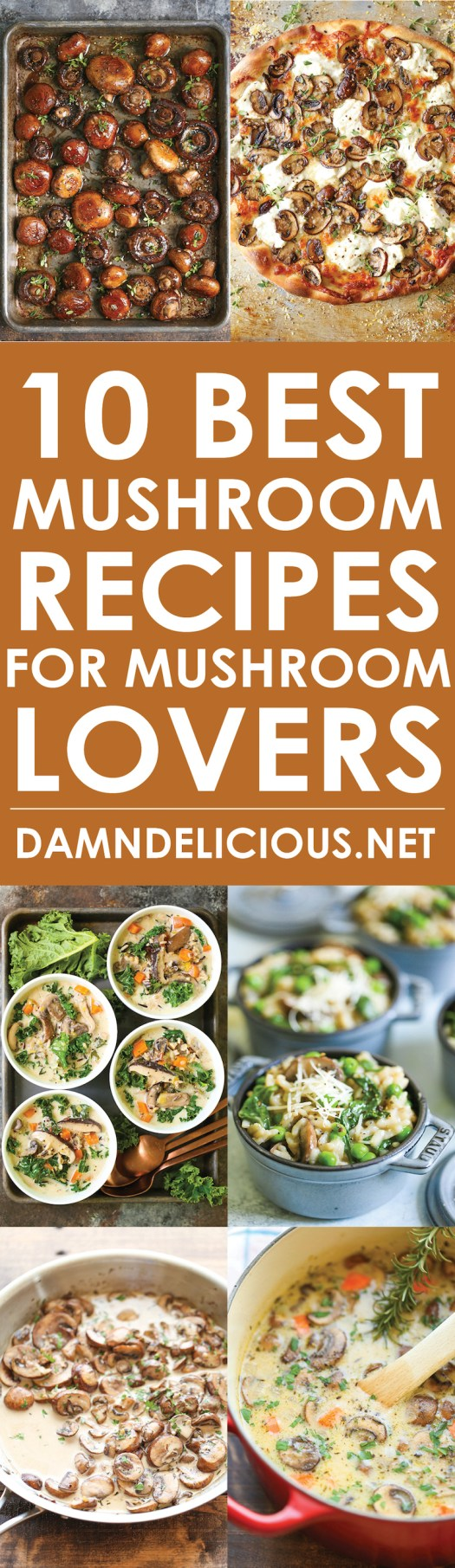 10 Best Mushroom Recipes for Mushroom Lovers - From the most amazing white mushroom pizza to the creamiest IP mushroom risotto, these recipes are THE BEST!!