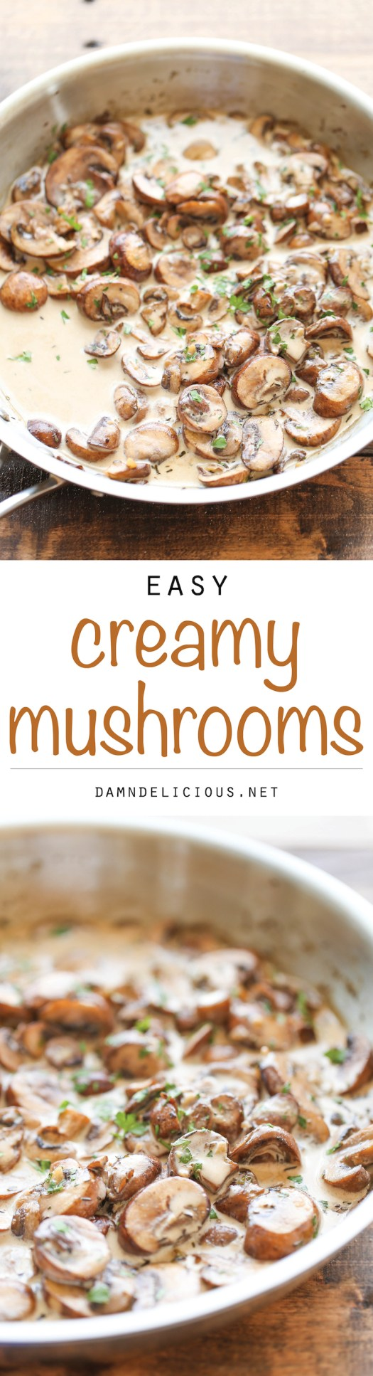 Easy Creamy Mushrooms - The easiest, creamiest mushrooms you will ever have – it's so good, you'll want to skip the main dish and make this a meal instead!