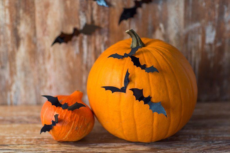 No Carve Bat Pumpkin For Halloween Velcro Brand Blog
