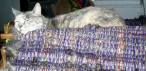 Lisa and the Fleecyful Rug