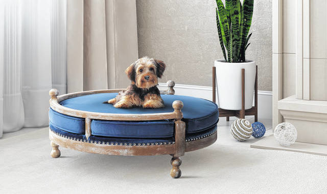 The Latest In Pet Furniture Pieces