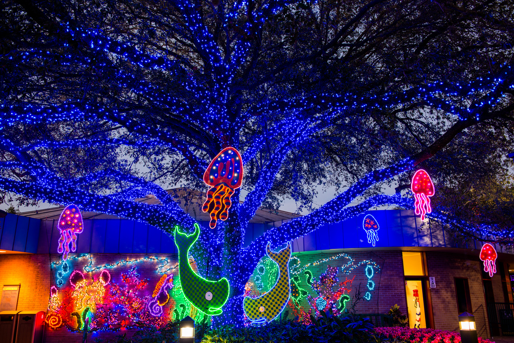 La Zoo Lights Parking