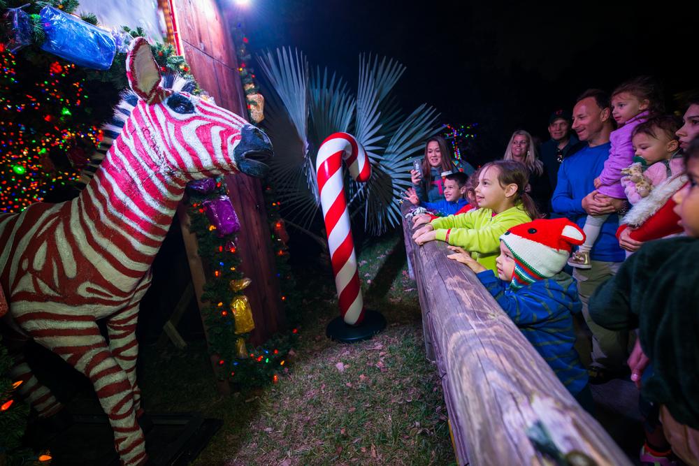 Zoo Lights Parking Houston