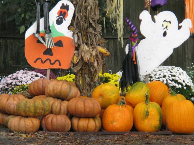 Arlington Texas Halloween 2020 County: No Plans to Regulate Halloween Activity   Arlington, Texas