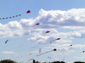 6-kites