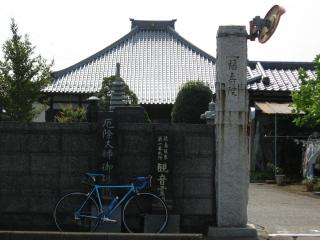 sashima-1-1.jpg