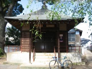sashima16-1-1.jpg