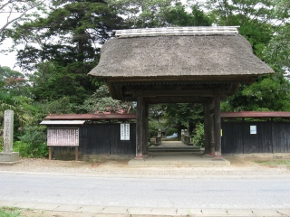 sashima4-1-1.jpg