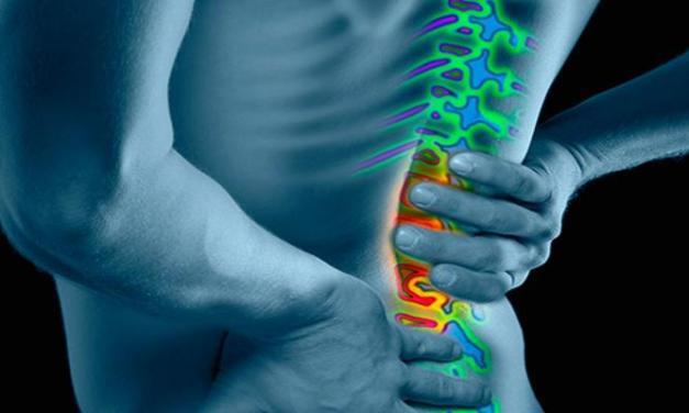還在跟下背痛奮戰中?3種常見背架一次介紹!