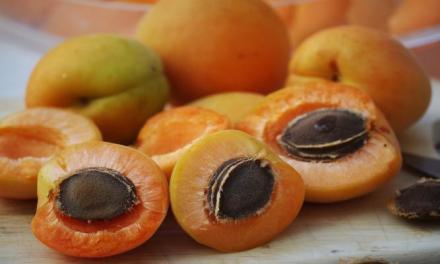 水果連籽吃會中毒!?真相竟然是…