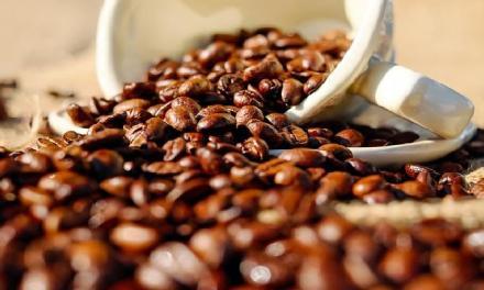 咖啡怎麼幫助燃脂的?動次動的原因在這