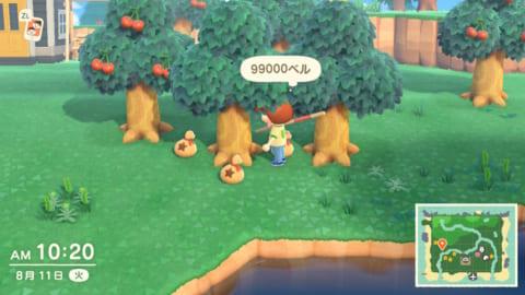 あつ森 お金の木 育たない