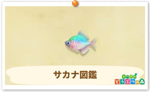 魚 売値 あつ森