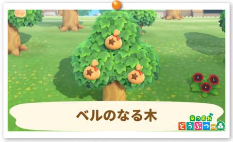 金 の なる 木 あつ 森