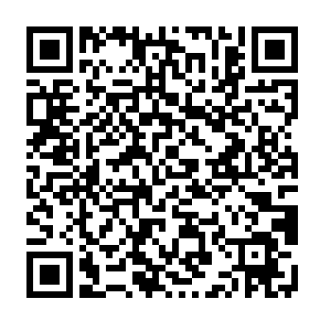 how to create qr codes for pokemon usum