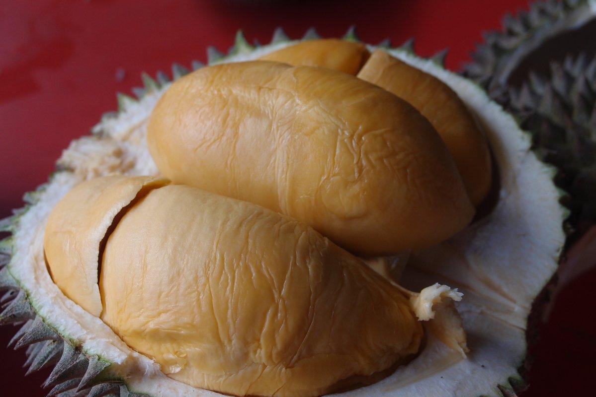 review-taste-test_durian-fever_black-thorn