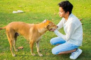 md zabi dogs cats animals lover