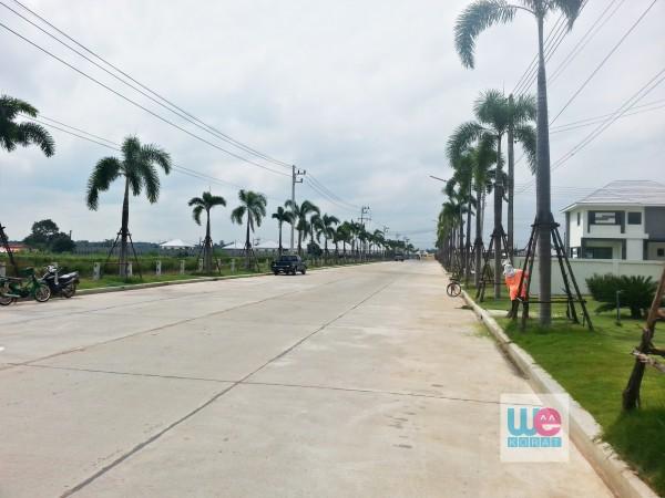 ถนนสายหลักของโครงการ