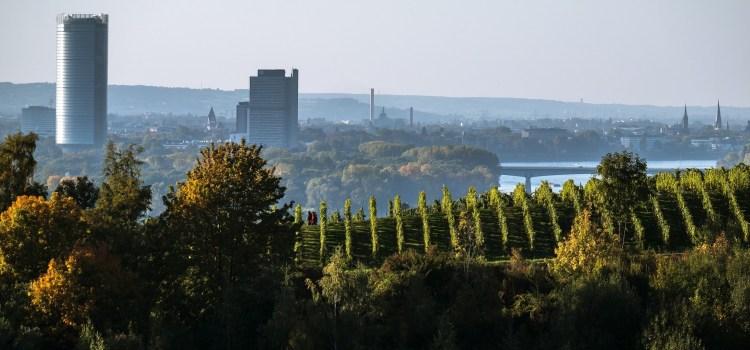 View of Bonn
