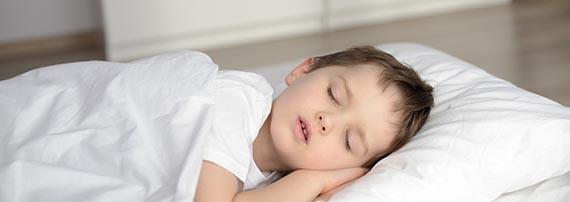 healthy sleep, organic bedding