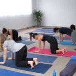 Hoe doe je de Kathouding bij Yoga (Marjariasana)?