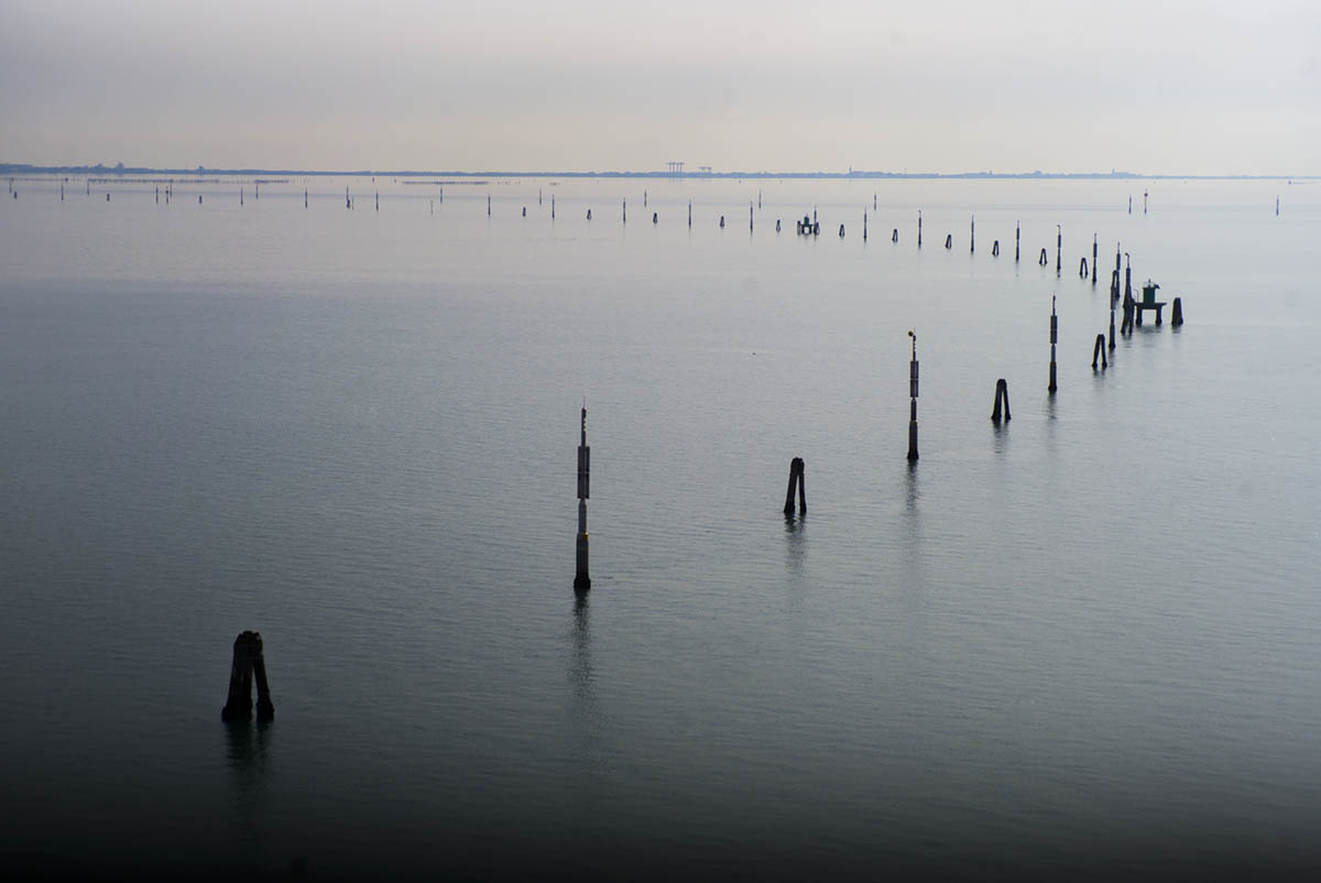the last days-Venice-medalndproject-