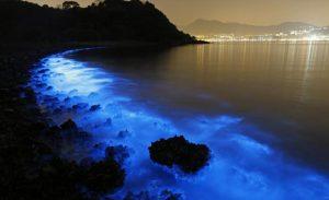 البحيرة المضيئة في تايلاند - من عجائب الدنيا