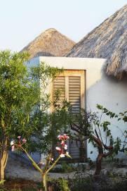 casa-wabi7-900x1350