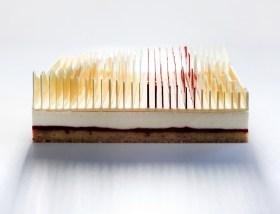 Kasko-tart-sliced-cake-2