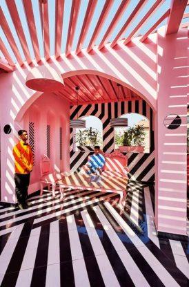 pink-zebra-1