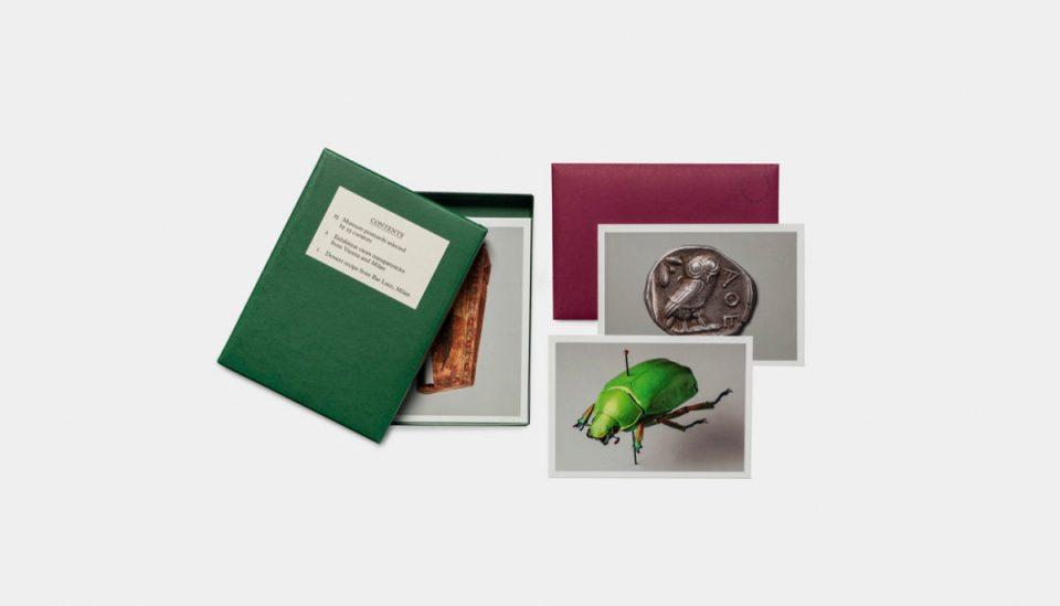 raccolta cartoline mostra wes anderson