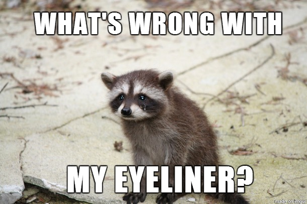 ClioMakeUp-beauty-addict-14-eyeliner-meme