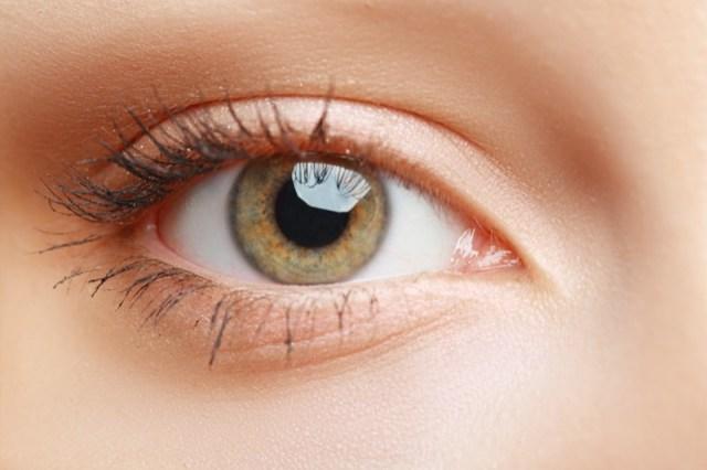 ClioMakeUp-palpebra-oleosa-trucco-rimedi-ombretto-eyeliner-mascara-primer-3