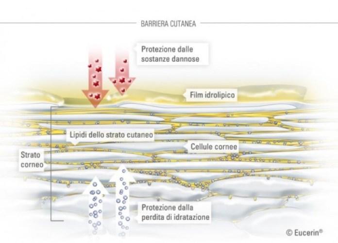 cliomakeup-prodotti-anti-pollution-10-barriera-cutanea