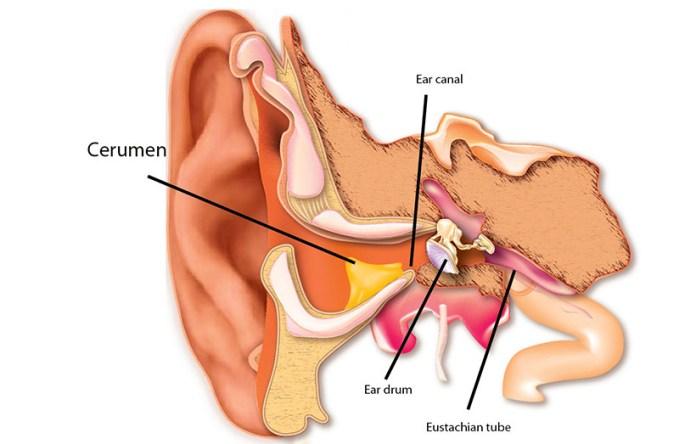 cliomakeup-come-pulire-le-orecchie-senza-cotton-fioc (9)
