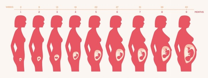 cliomakeup-disturbi-gravidanza-cambiamento-corpo-3