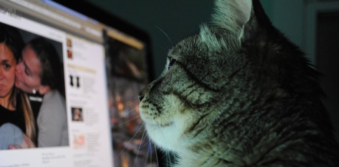 cliomakeup-galateo-social-tra-ex-21-gatto