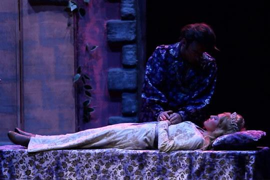 La bella durmiente, el musical