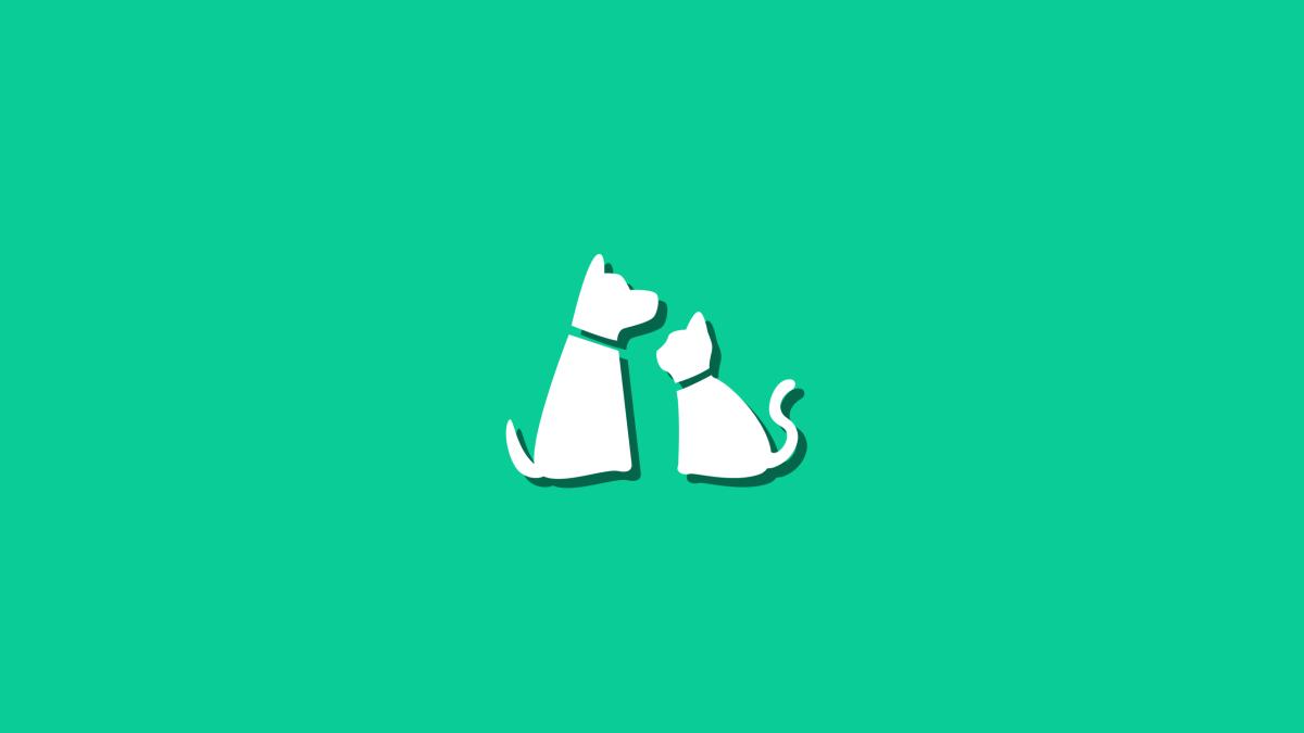 Cómo ahorrar con los gastos de tu mascota