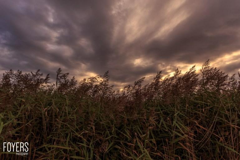 Snape Maltings-1-copyright Robert Foyers-_MG_9717-September 14, 2015-Snape