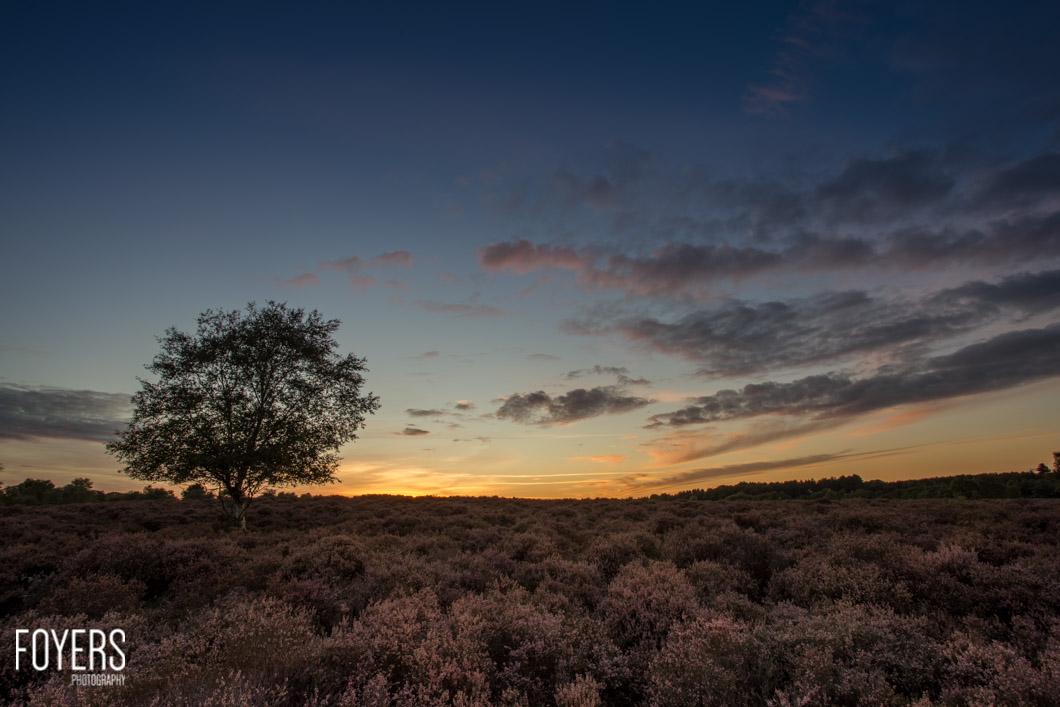 last of the light on dunwich heath-1-copyright Robert Foyers-_MG_9999-September 24, 2015-Dunwich heath-5-HDR-Edit