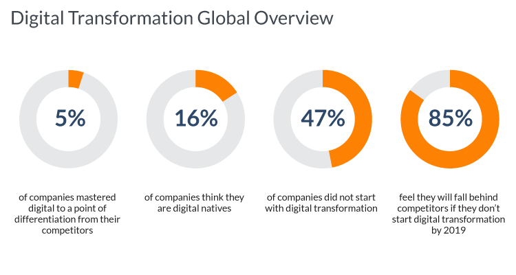 N-iX - Digital Transformation Global Overview