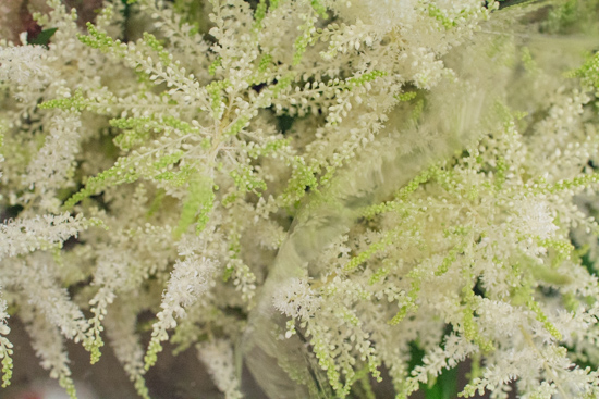 Image result for covent garden astilbe