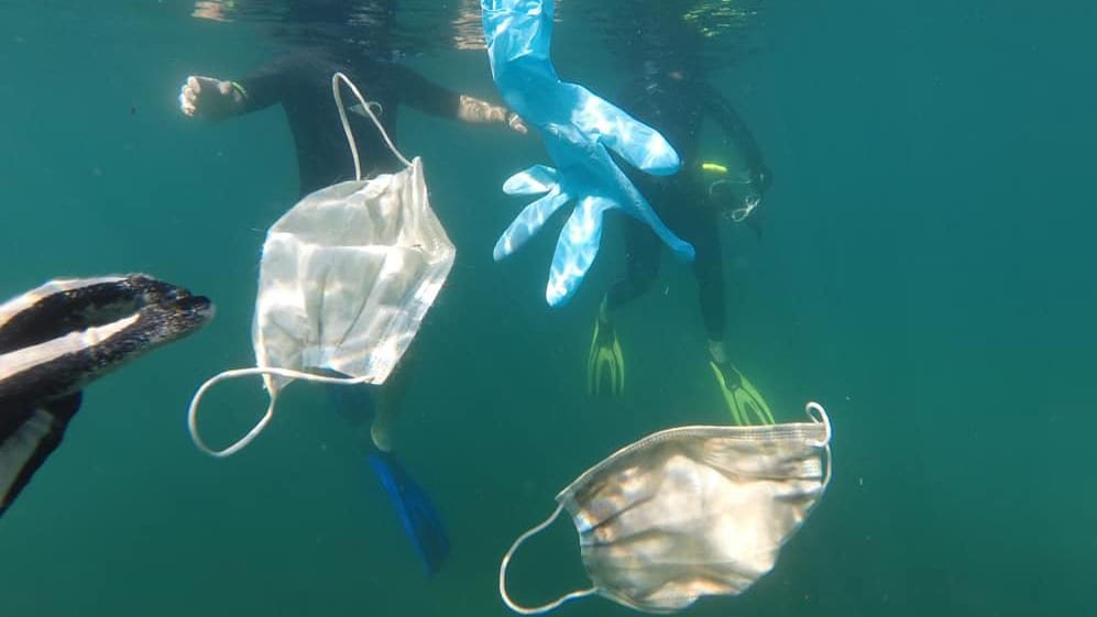 PPE masks floating in the sea
